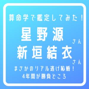星野源新垣結衣タイトル